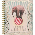 leelah big deal spiral book
