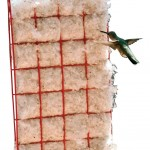 Songbird Essentials Hummer Helper Nesting Material with Hanger