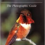 Hummingbirds of North America book bu SNGH